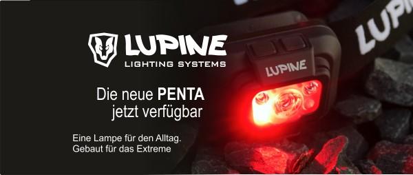 lupine_penta